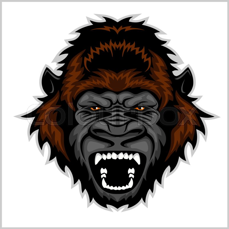 800x800 Gorilla Head Cartoon