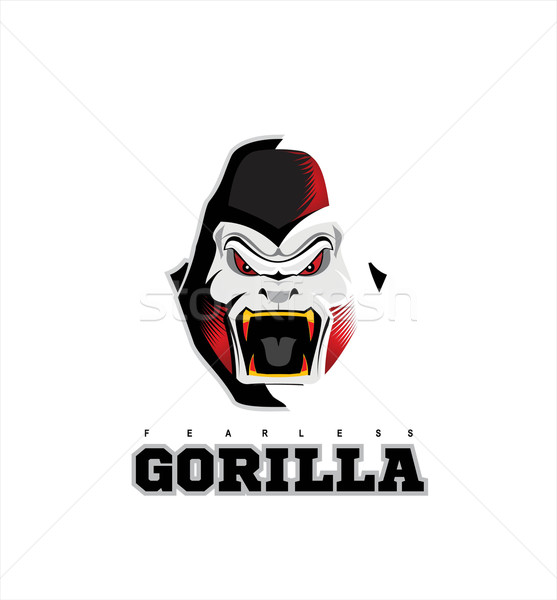 557x600 Gorilla. Gorilla Face. Gorilla Head. Vector Illustration Stendy