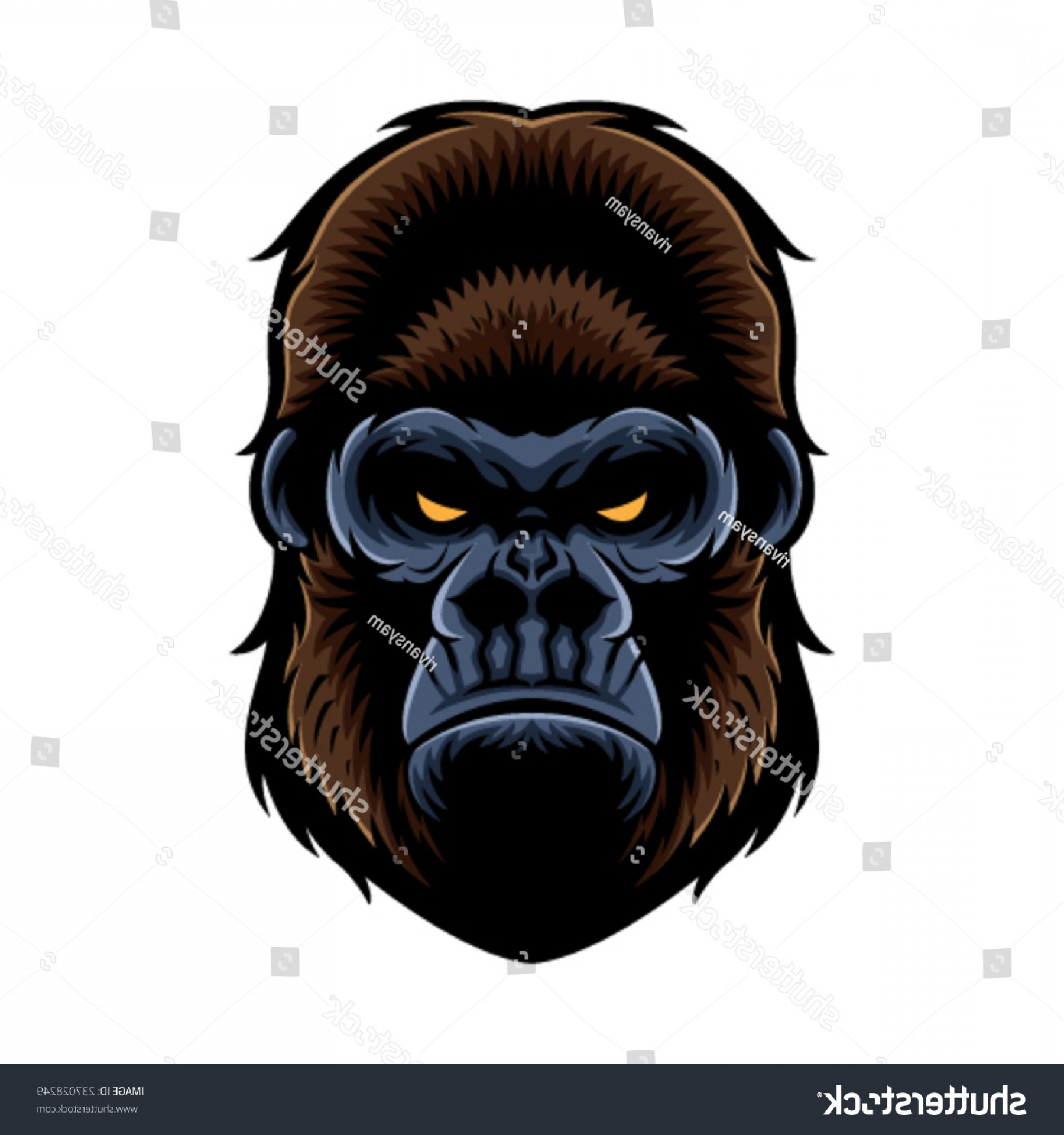 1800x1920 Shutterstock Gorilla Head Vector Graphic Shopatcloth