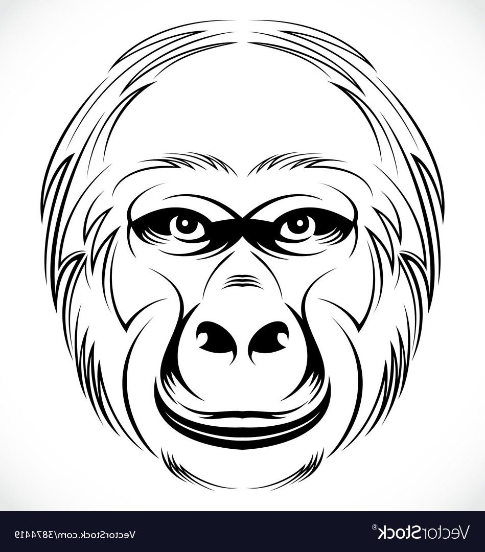 949x1080 Best 15 Gorilla Head Vector Image
