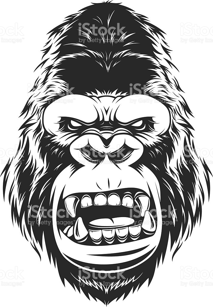712x1024 Collection Of Gorilla Head Drawing High Quality, Free