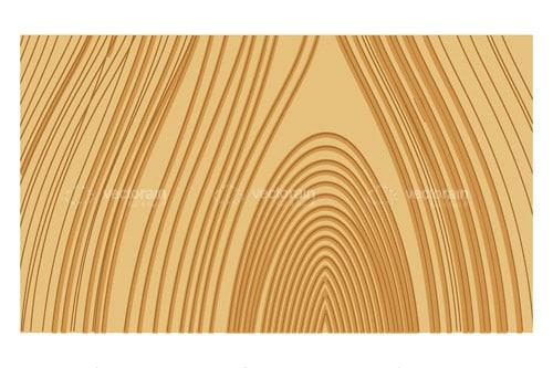500x333 Wood Grain Vector