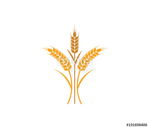 500x429 Vector Logo Design And Elements Of Wheat Grain, Wheat Ears, Wheat