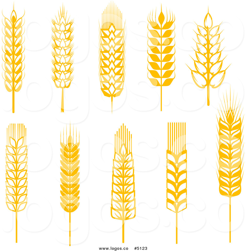 1024x1044 Collection Of Free Grained Clipart Yellow Wheat. Download On Ubisafe