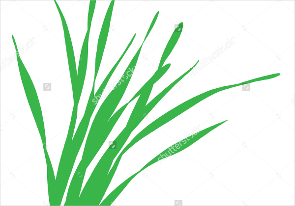 Grass Blades Vector