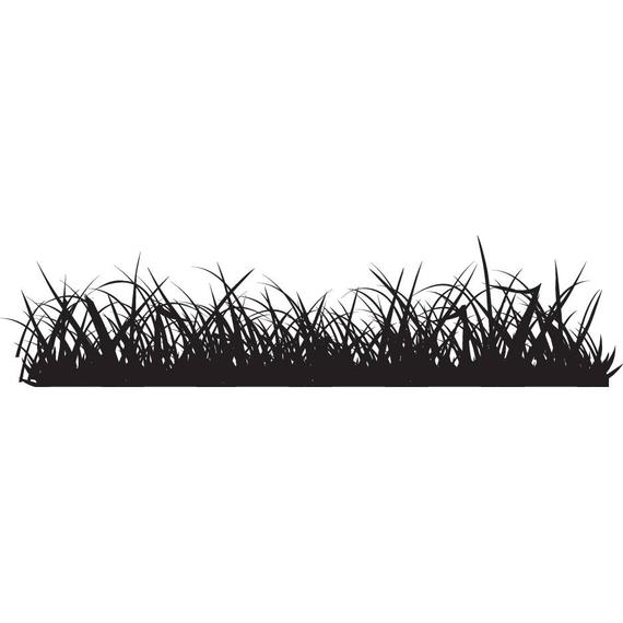 570x570 Detailed Grass 1 Blades Sod Garden Nature Lawn Landscape Etsy