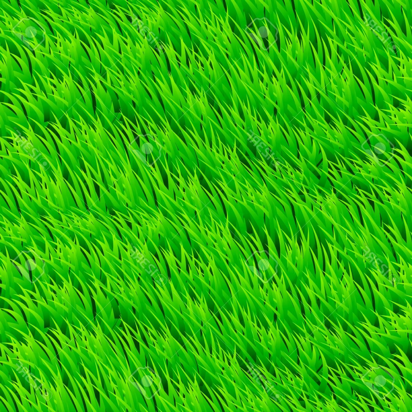 1560x1560 Photostock Vector Fresh Grass Seamless Beautiful Fresh Lawn Grass