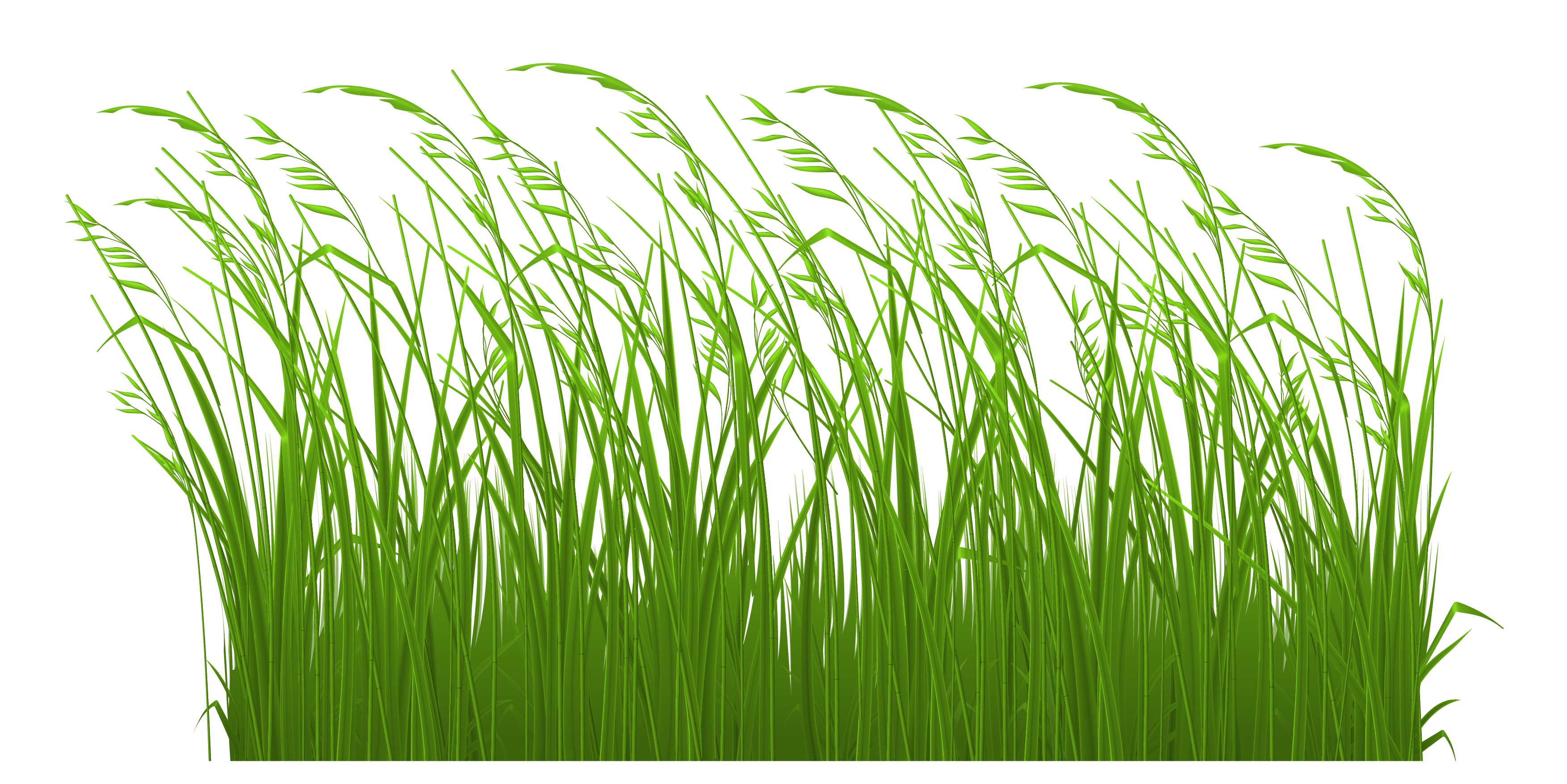 3508x1757 15 Lawn Vector Green Grass For Free Download On Mbtskoudsalg