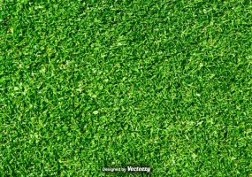 285x200 Grass Lawn Free Vector Graphic Art Free Download (Found 1,511