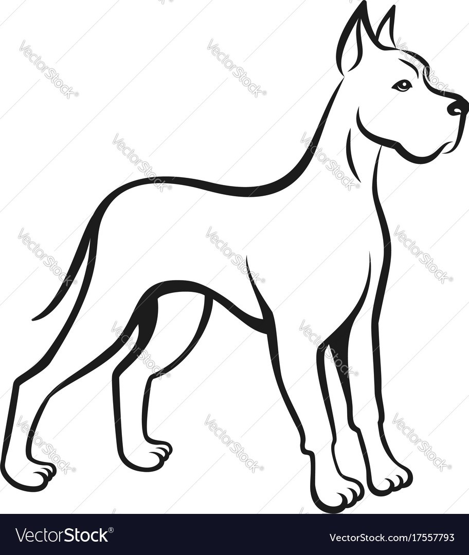 912x1080 Dog Line Drawing Great Dane Can Be Used As Logo Vector 17557793 4