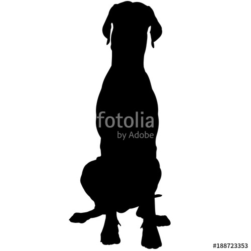 500x500 Great Dane Dog Silhouette Vector Graphics Stock Image And Royalty