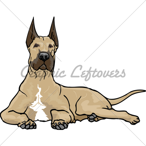 500x500 A Fawn Great Dane Relaxing. Gl Stock Images
