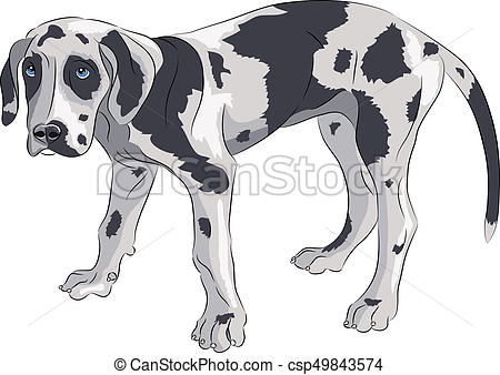 450x338 Vector. Puppy Of The Great Dane. A Puppy Of A German Great Dane Is