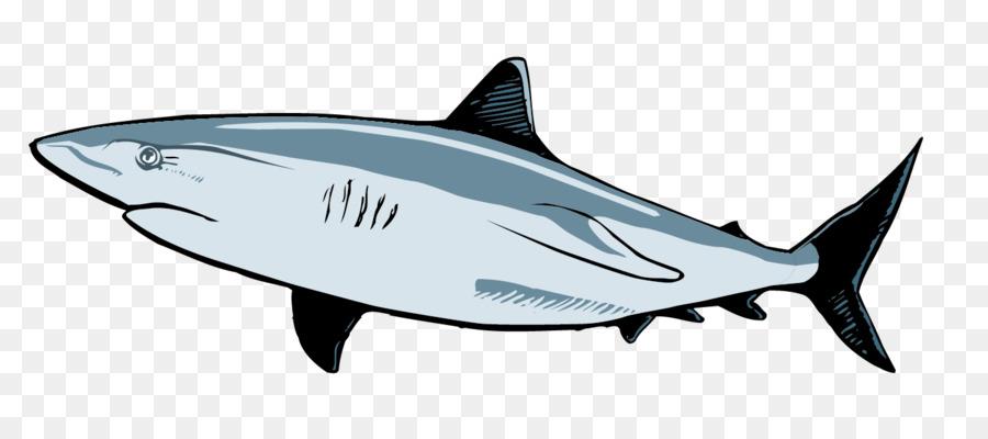 900x400 Requiem Shark Great White Shark Clip Art