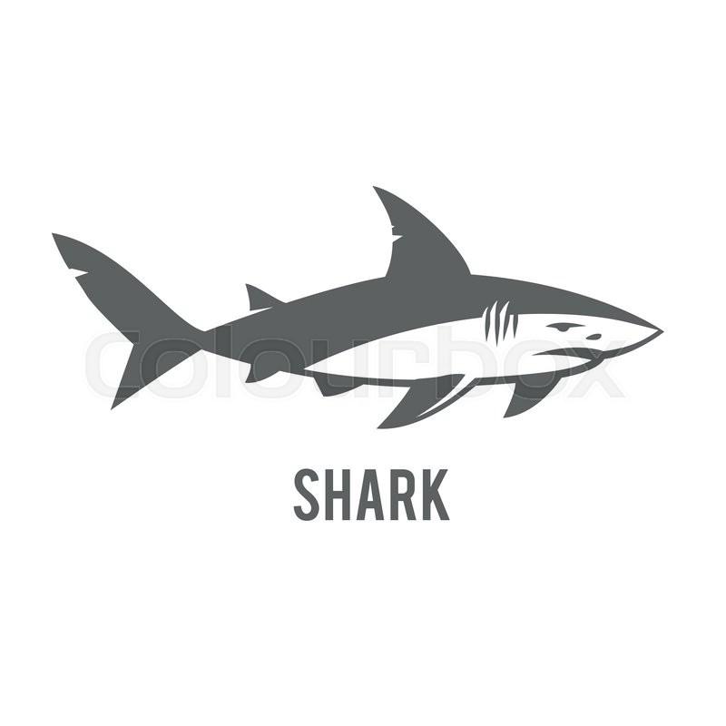800x800 Angry Shark Vector Icon. Great White Shark Logo Sign Emblem Vector