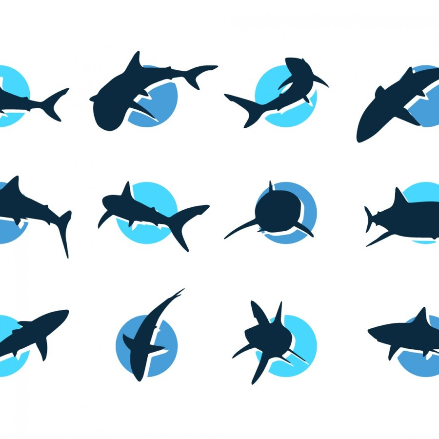 900x900 Download Shark Images Vector Clipart Great White Shark Graphics