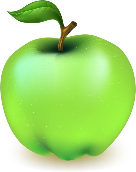 474x600 Green Apple Free Vector In Adobe Illustrator Ai ( .ai