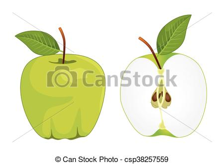 450x330 Green Apple Whole And Half Apple , Vector Set . Vector Illustration.