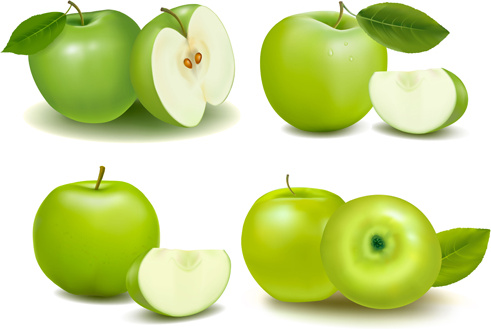 491x329 Green Apple With Slice Vectors Free Vector In Encapsulated