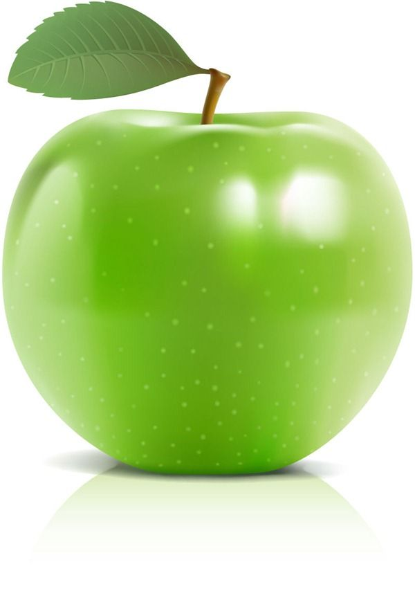 600x877 Delicious Green Apple Vector Graphics Ovocie