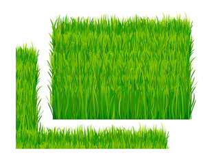 299x240 Lawn Mower. Mowed Grass. Lawn Mower Cutting Green Grass. Vector