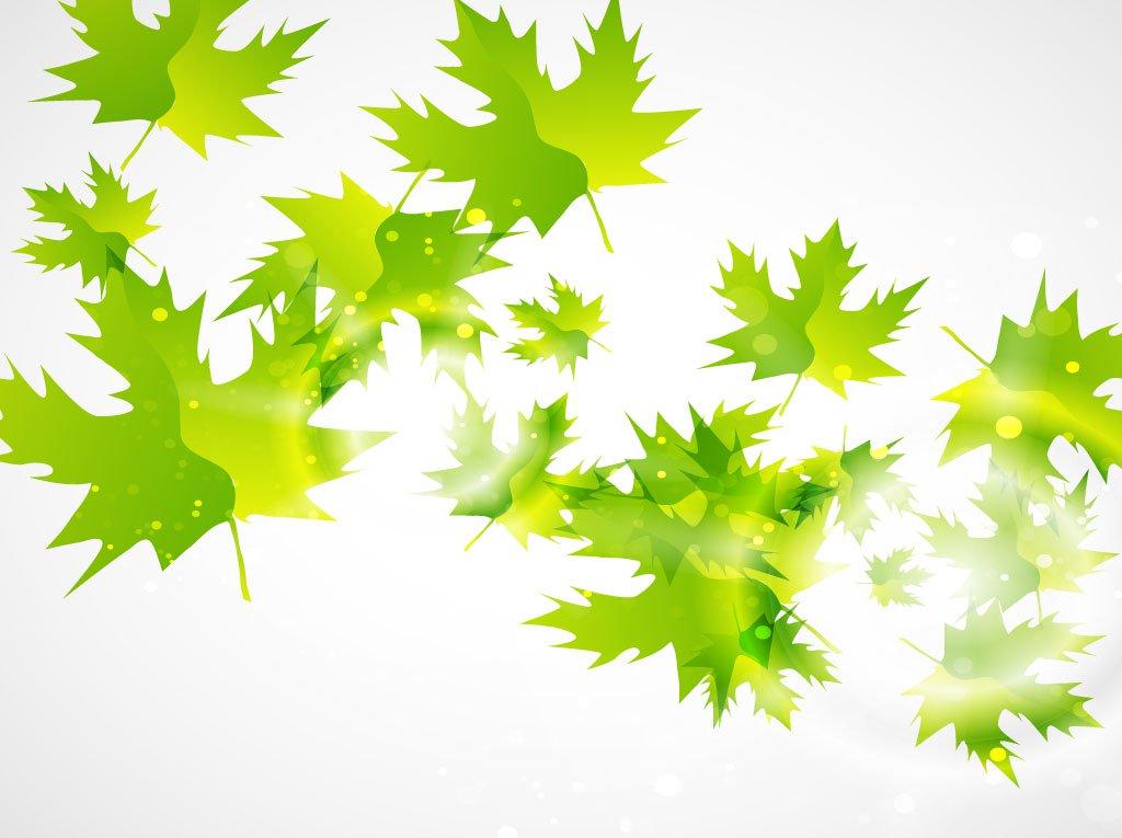 1024x765 Green Leaf Vector Background Vector Art Amp Graphics
