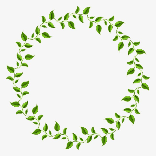 650x650 Green Leaves Decorative Circle, Decorative Olive Branch, Green