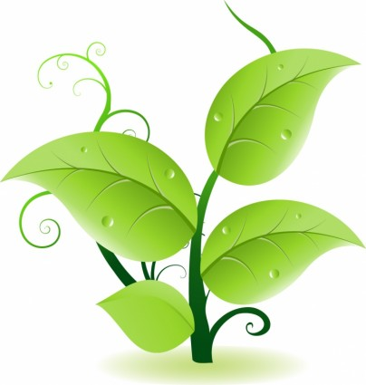404x425 Green Leaves Vector