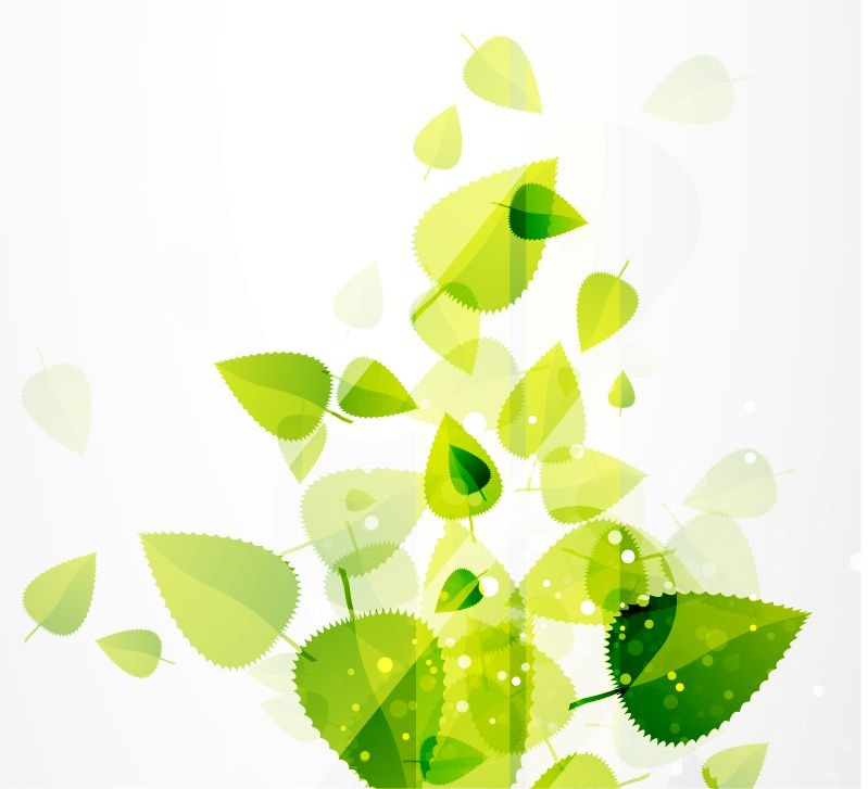 799x727 Abstract Green Leaves Vector Background Free Vector Graphics