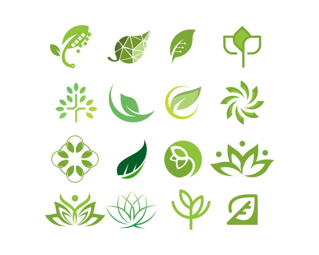 626x501 Green Leaves Vectors, Photos And Psd Files Free Download
