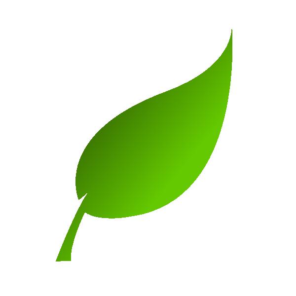 600x600 Collection Of Free Leaf Vector File. Download On Ubisafe