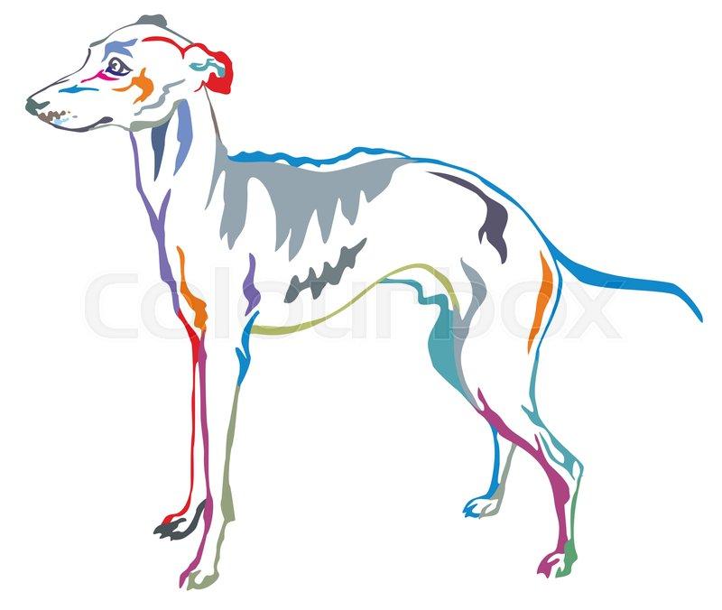800x676 Colorful Decorative Portrait Of Standing In Profile Italian