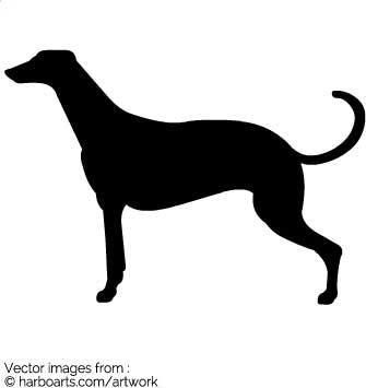 335x355 Download Greyhound Dog Silhouette