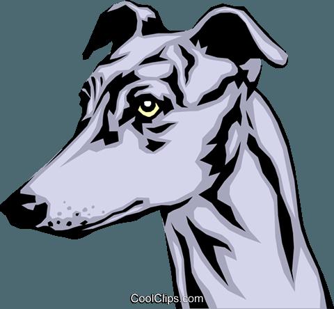 480x444 15 Greyhound Vector Line Art For Free Download On Mbtskoudsalg