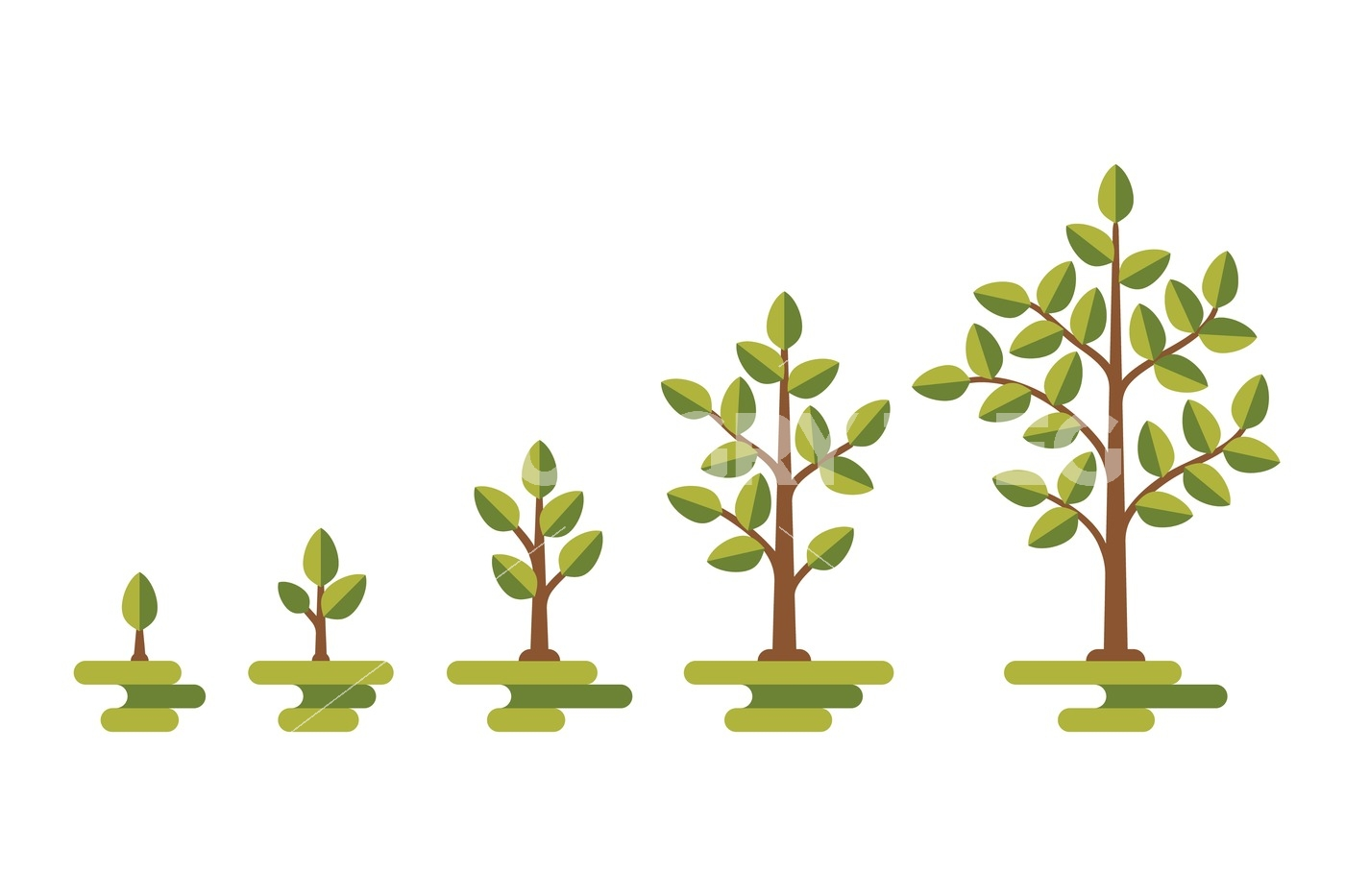 1400x933 Green Tree Growth Vector Diagram By Microvector