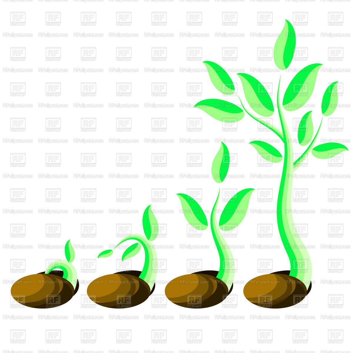 1200x1200 Phases Plant Growth Vector Image Vector Artwork Of Plants And