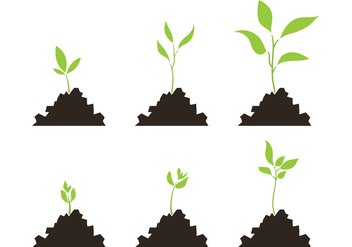 352x247 Vector Plant Growth Cycle Free Vector Download 327565 Cannypic
