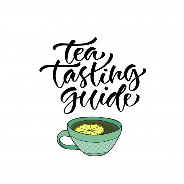 626x626 Tea Tasting Guide. Vector Calligraphy For Menu. Modern Hand