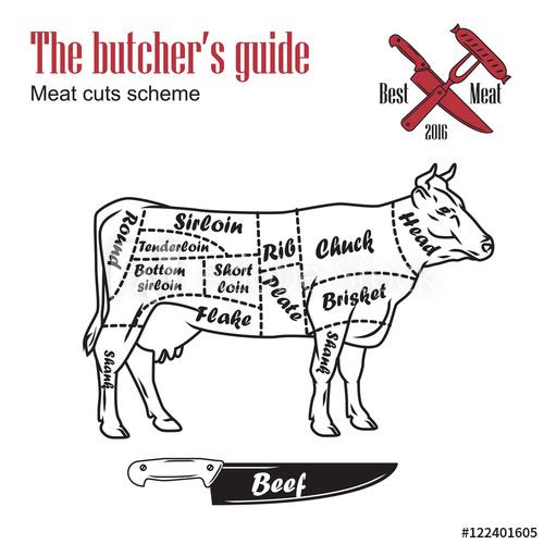 500x500 Butcher Guide Vector Illustration. Cut Scheme Beef. Cow Meat