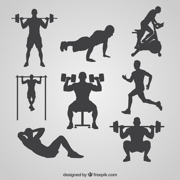 626x626 Gym Vectors, Photos And Psd Files Free Download
