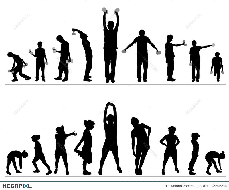 800x665 Fitness Gym Vector Illustration 8506810