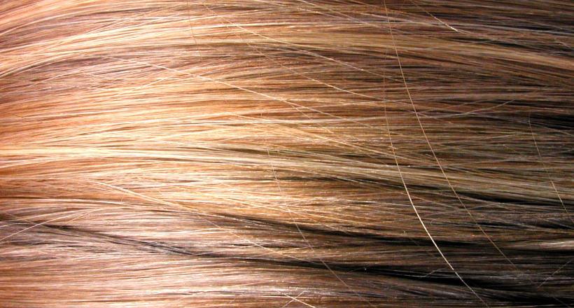 Hair Texture Vector