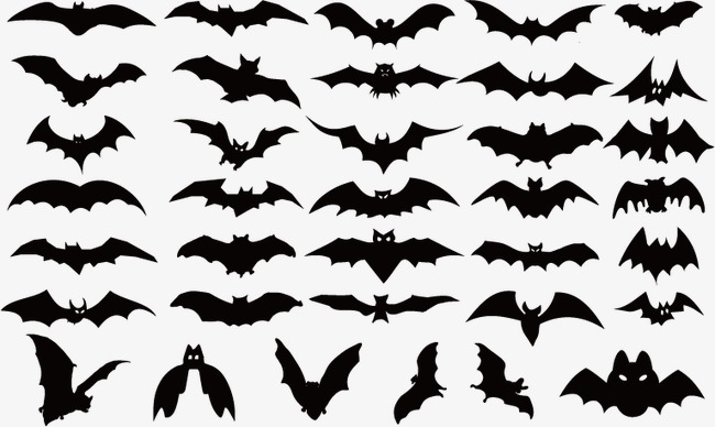 650x388 Creative Halloween Bat, Halloween Vector, Bat Vector, Bat Clipart