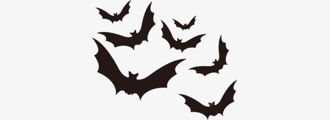 650x237 Vector Halloween Scary Black Bats, Halloween Vector, Black Vector