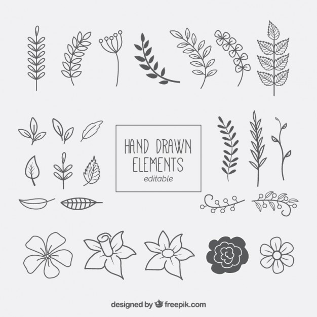 626x626 Hand Drawn Floral Elements Collection Vector Free Download