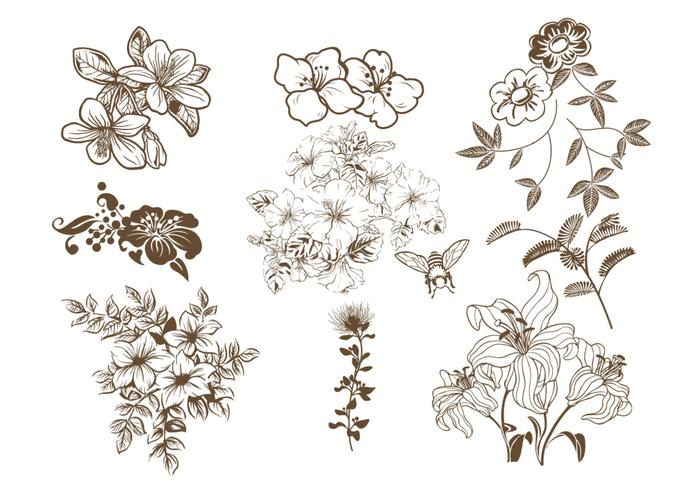 700x490 Hand Drawn Floral Vector Pack