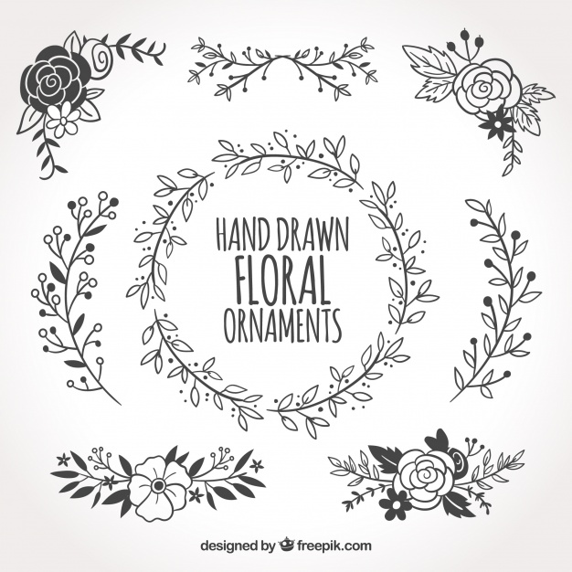 626x626 Collection Of Hand Drawn Floral Ornaments Vector Free Download