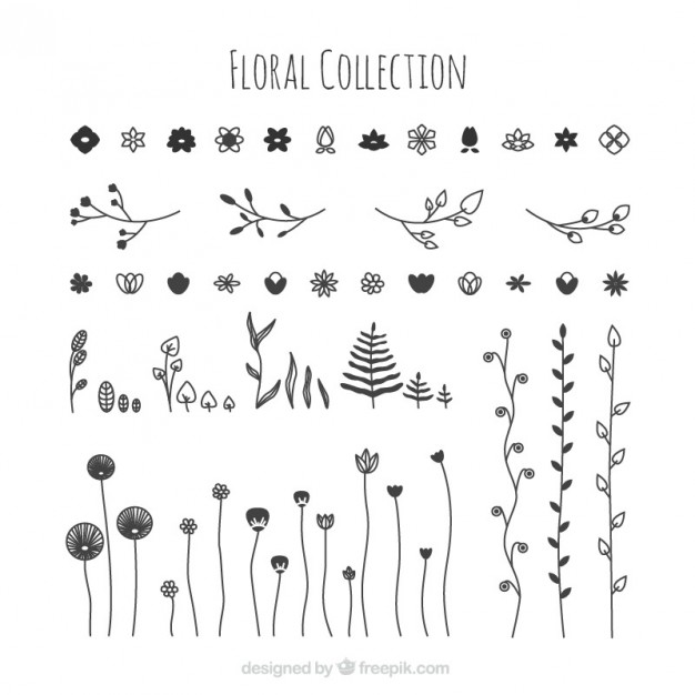 626x626 Hand Drawn Floral Collection Vector Free Download