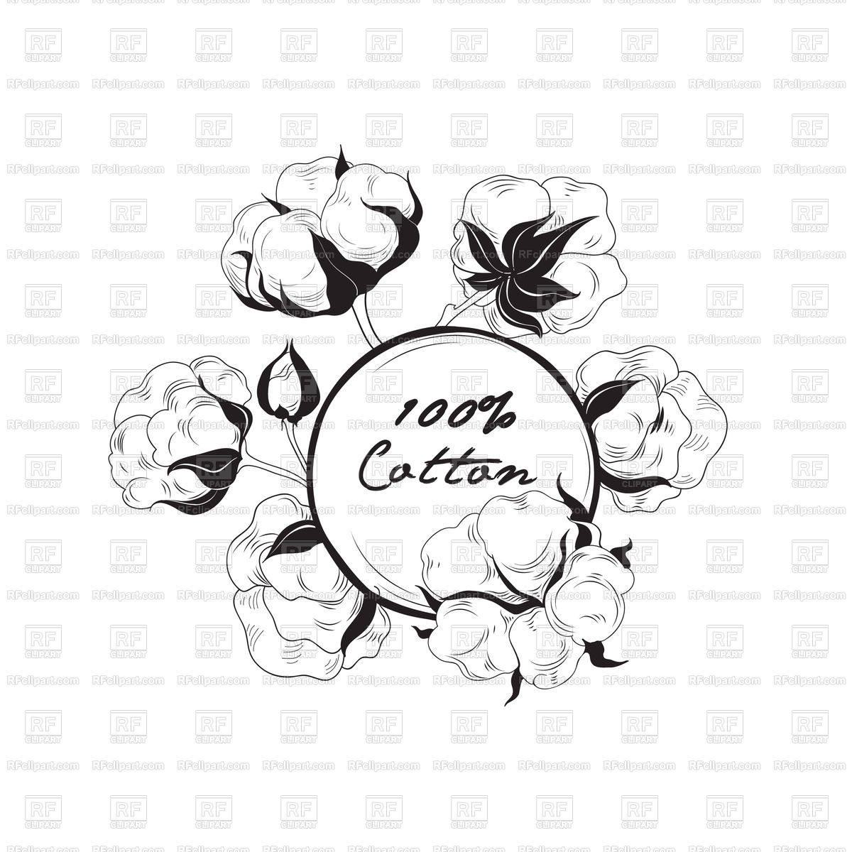 1200x1200 Cotton Flower. Hand Drawn Floral Frame. Vector Image Vector