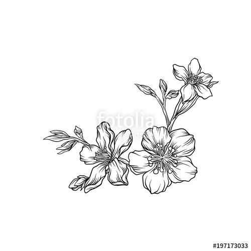 500x500 Hand Drawn Flower Branch, Monochrome Floral Design Element Vector